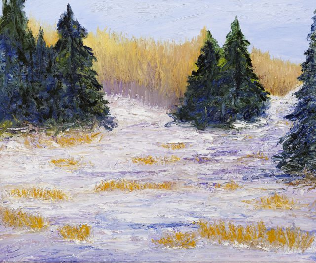 Canadian Winter Scenery 1