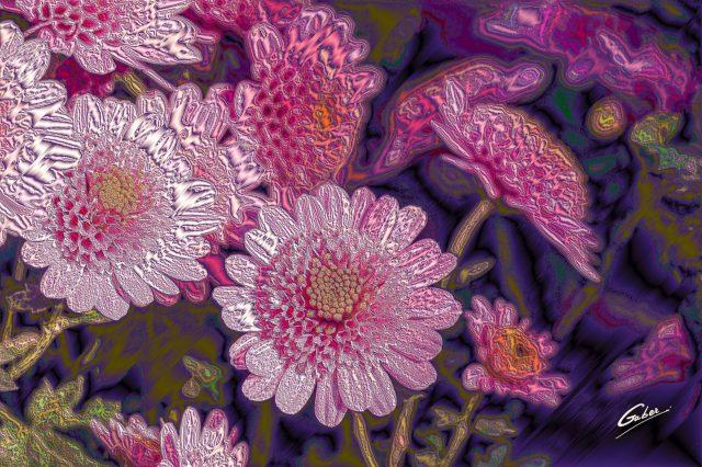 Chrysanthemum indicum 2020 04