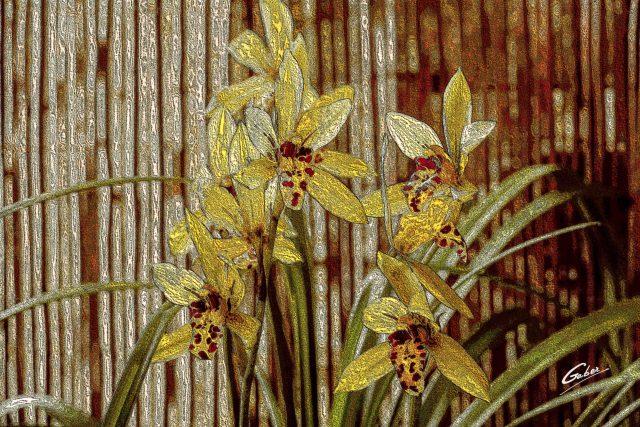 Orchids Cymbidium 2020 03