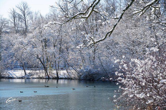 Winter Scenes 2020 01