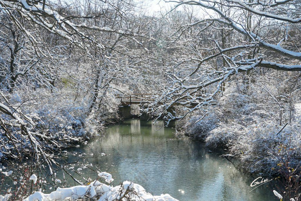 Winter Scenes 2020 32