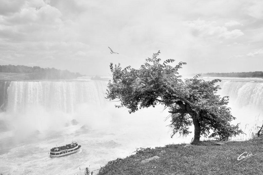 Summer Scenes, Niagara Falls, Canada, 2018  05