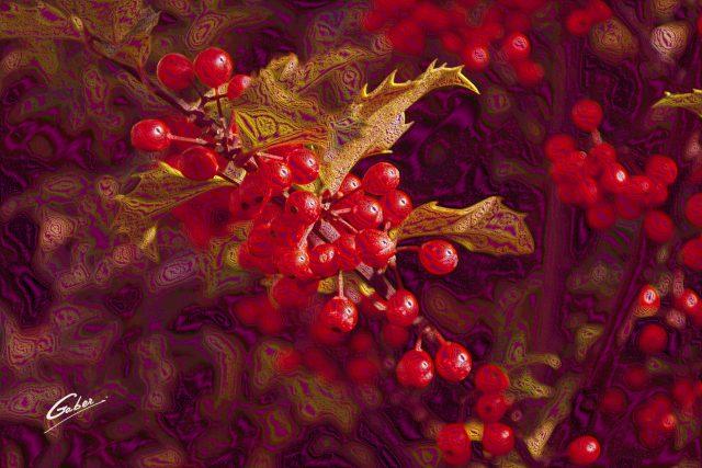 Holly European (Ilex aquifolium) 2013  01