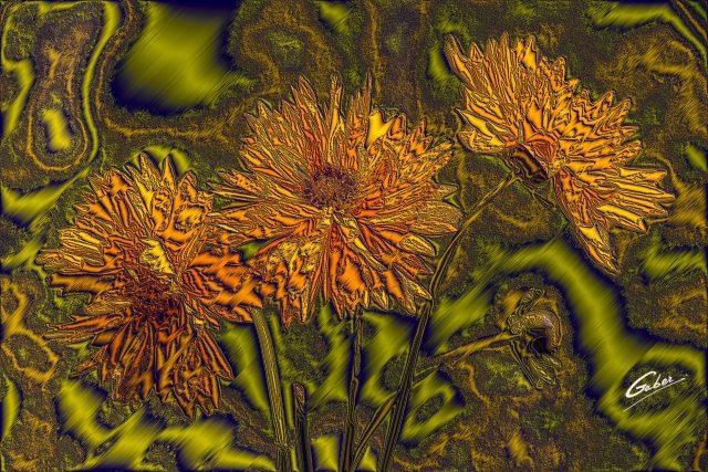 Yellow_Carnation_02d07x_16x24_FINAL_GAB-ERP-F-17-29